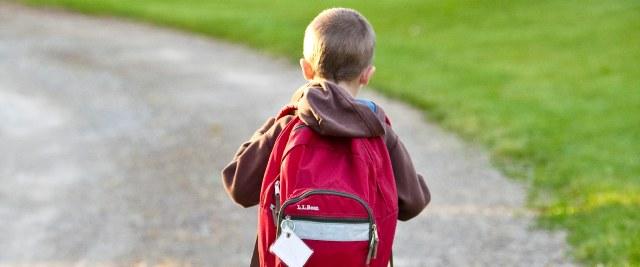 Pomoc materialna dla uczniów w roku szkolnym 2019/2020