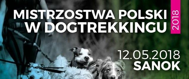 SOBOTA: Mistrzostwa Polski w Dogtrekkingu!