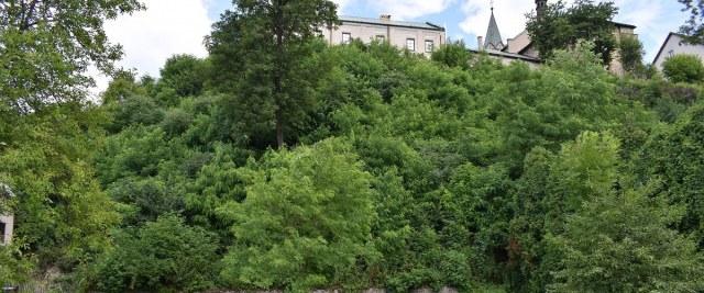 Prace nad zabezpieczeniem osuwiska – konieczna wycinka drzew