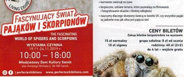 Fascynujący świat pająków i skorpionów