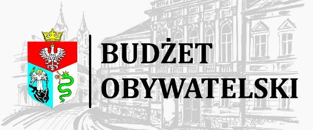Budżet Obywatelski 2017. Jak głosować?